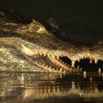 Cocodrilo del Orinoco (Crocodylus Intermedius)